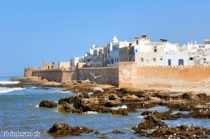 Double digit growth for Morocco and Tunisia