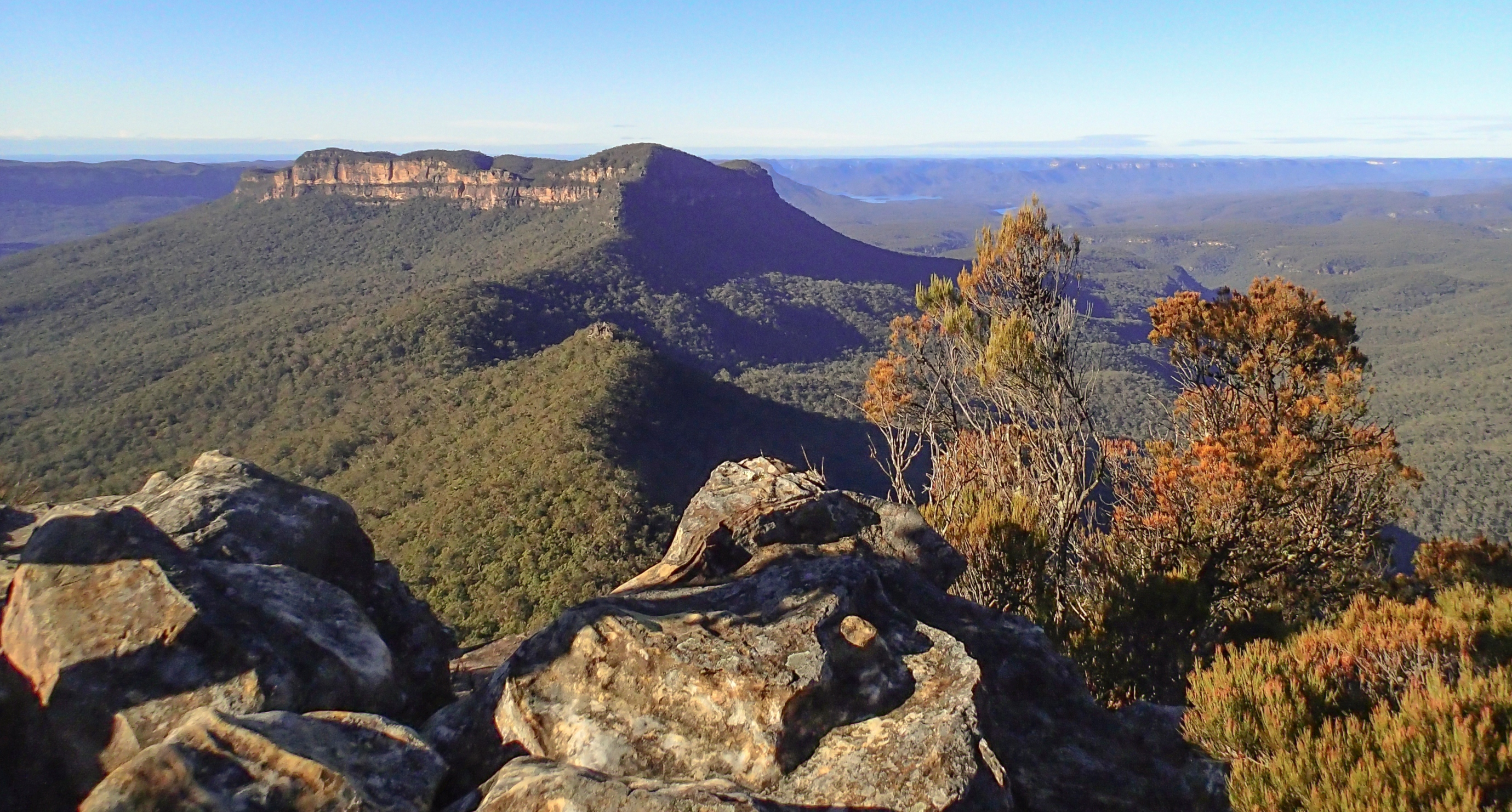 Walking track at Blue Mountains National Park