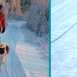 Image of man dog sledding in Finland