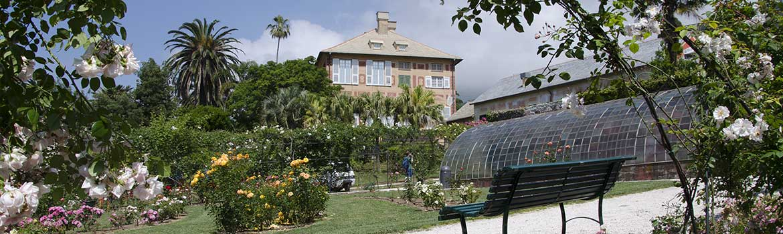 Image of Nervi Gardens