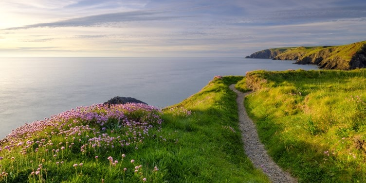 Coastal path in Ceibwr Bay, Pembrokeshire
